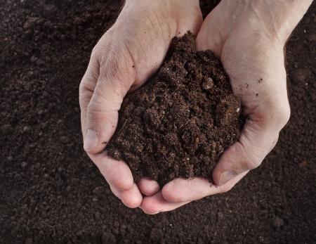 soil: Della holding della mano del terreno di superficie vista dall'alto