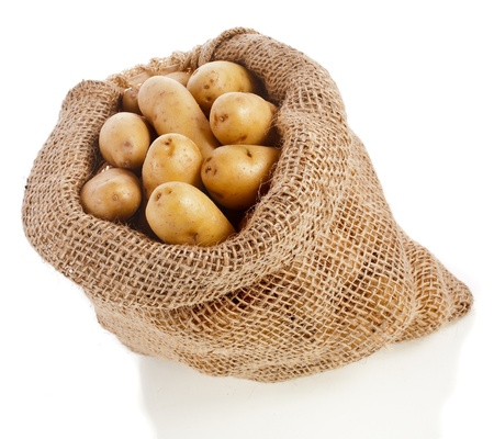 Ratte potatoes in sack bag isolated on a white background photo