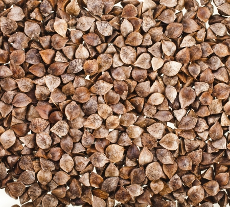 buckwheat raw seeds close up macro shot surface background Stock Photo - 20137439