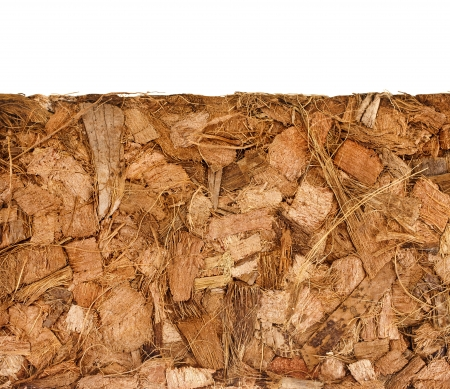 bark mulch: Coconut Coir Husk Fiber Chips Surface border close up isolated on white background Stock Photo