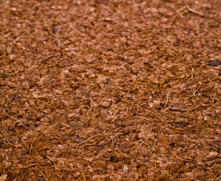 One Block of Coconut Coir Husk Fiber Chips surface texture background Stock Photo - 20137438