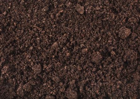 suelo arenoso: Fondo de la superficie del suelo Foto de archivo
