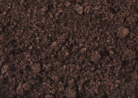 compost: Soil surface background