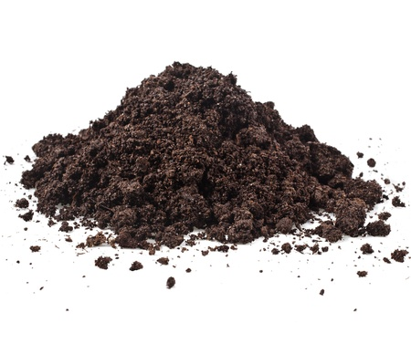 Pile heap of soil humus isolated on white background Stock Photo - 20509366