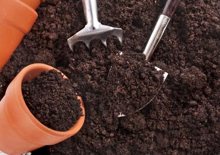 turba: herramientas de jardiner?a y pl?ntulas en el fondo de la superficie del suelo Foto de archivo