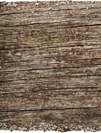distressed wood: Old wood board plank texture surface isolated on white background