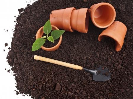 turba: frontera de herramientas de jardinería y plántulas en la superficie del suelo aislado en un fondo blanco