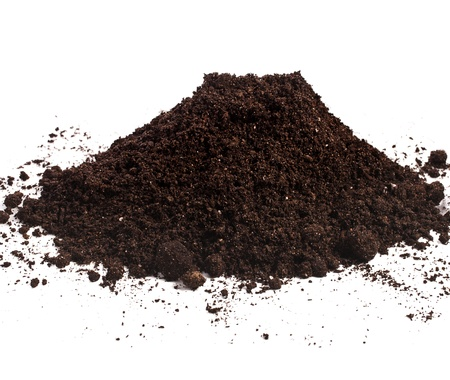 humus: Pile heap of soil humus isolated on white background