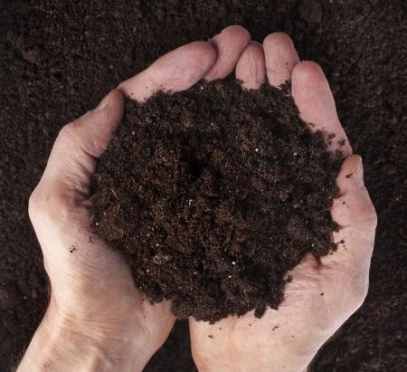 handful: Hand holding soil Stock Photo