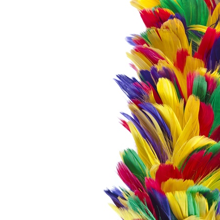 falling feather: border of different colored feathers with copy space isolated on white background