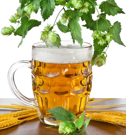 beer mug in wooden table isolated on white background photo