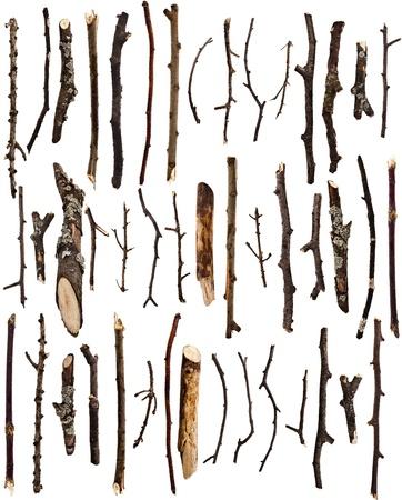乾燥した木の枝の白い背景で隔離のコレクション セット