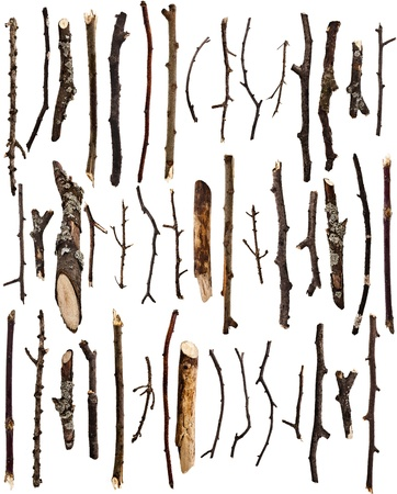 burnt wood: Collection set of dry tree branches isolated on a white background