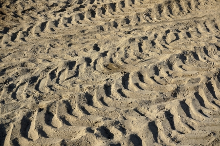 traces of the machine on the surface ground soil texture background                              Stock Photo - 21061296