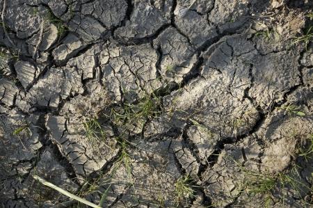 Ground Cracked Dirt Background Stock Photo - 21061297