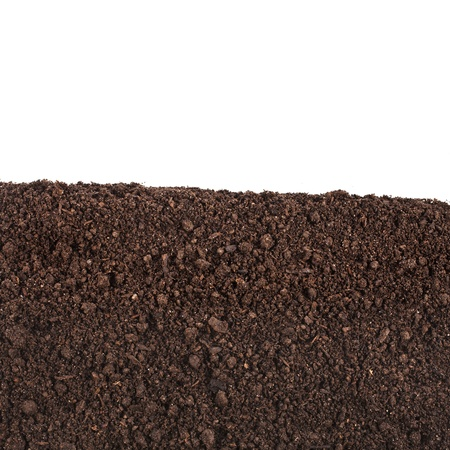 suelo arenoso: suelo orgánico de cerca la superficie aislada en el fondo blanco Foto de archivo