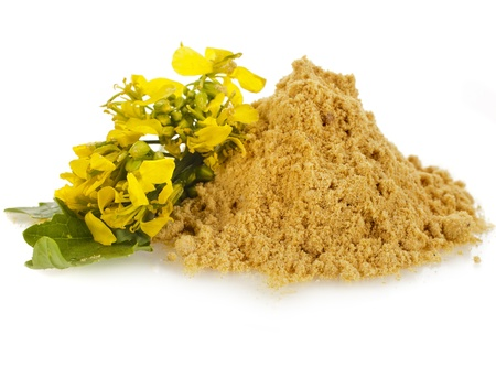 mustard plant: pile of mustard powder isolated on white background