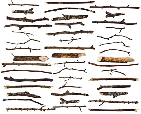 Collection set of dry wood branches isolated on a white background Stok Fotoğraf - 21330743
