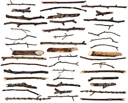 Set Recolección de ramas de madera seca aislada en un fondo blanco