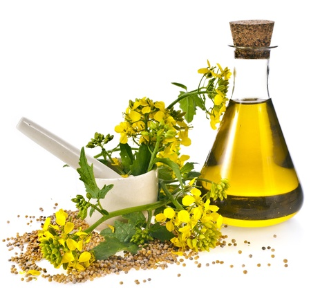 oilseed rape: oil glass jar and mustard seeds with flower blossom isolated on white background