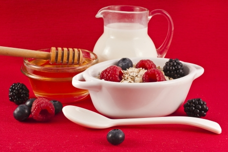 carafe: oat flake in a bowl with a fresh milk and honey on red background , diet concept