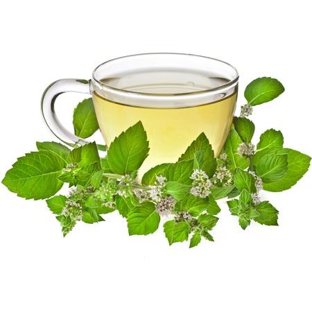 Tasse Tee mit Minze auf einem weißen Hintergrund