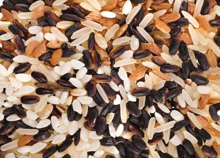 wild rice: Mixed Rice Surface Close up Macro Texture Stock Photo