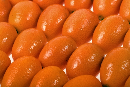 kumquat close up background photo