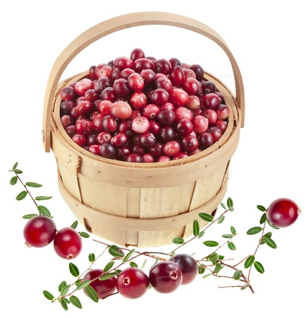 cranberries in the basket isolated on white background photo