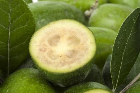 feijoa: Feijoa, Pineapple Guava  Feijoa sellowiana