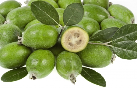 feijoa: Feijoa sellowiana