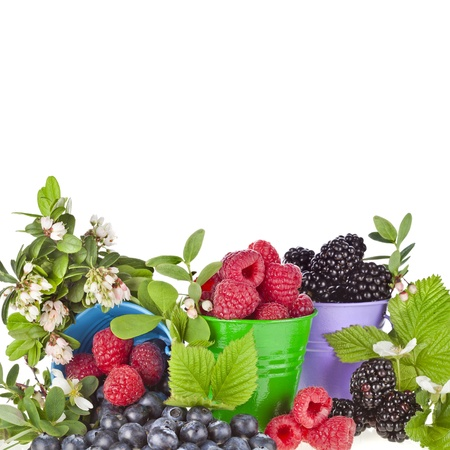 bramble: Border of appetizing forest berries in color buckets with flower background Stock Photo