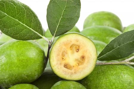 feijoa: Pineapple Guava  Feijoa sellowiana
