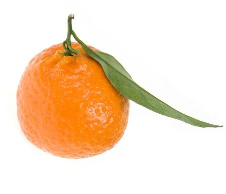 tangerine tree: mandarin   tangerine   isolated on a white background Stock Photo