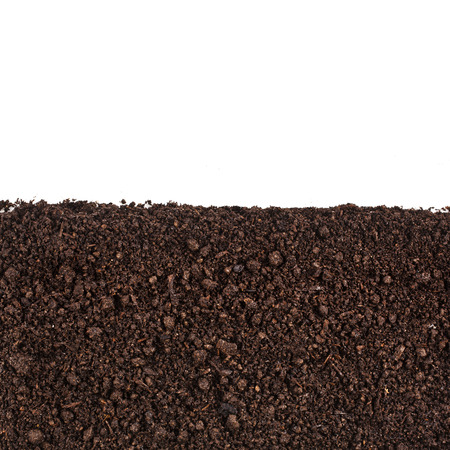 turba: pala, el compost, la colina, el cultivo, primer plano, mont�n, grano, mojado, �rbol, la recuperaci�n, el suelo, �spero, polvo, acero, nadie,, garra, la agricultura, el barro natural, blanco, tierra, herramientas, pote, marr�n, org�nico, f�rtil, turba, pu�ado, campo, cosecha, pila, paleta, pila, ecolog�a, f