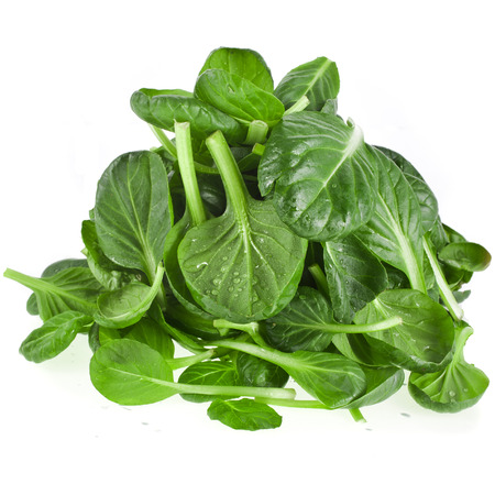 chinese spinach: fresh green leaves spinach or pak choi isolated on a white background