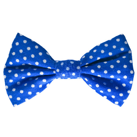 bow tie: Blue bow close up on white isolated on white background