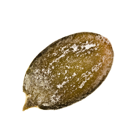 Single pumpkin seed peeled close up macro shot isolated on white background photo
