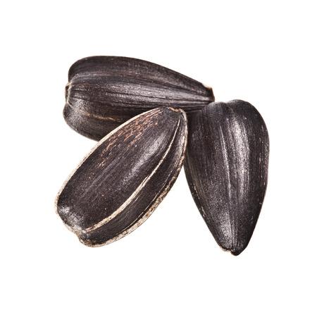 semillas de girasol: Tres semillas de girasol de cerca extrema disparo macro sobre fondo blanco Foto de archivo