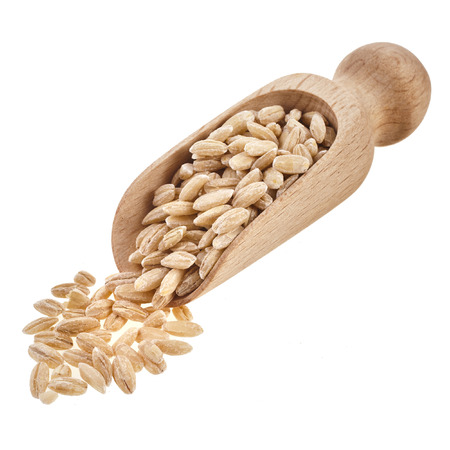 Pearl barley grains isolated on a white background Stock Photo