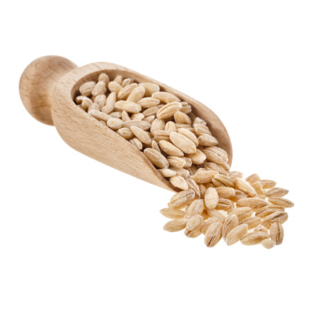 pearl barley: Pearl barley grains in wooden scoop isolated on a white background