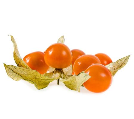 Physalis fruit close up macro shot on white background photo