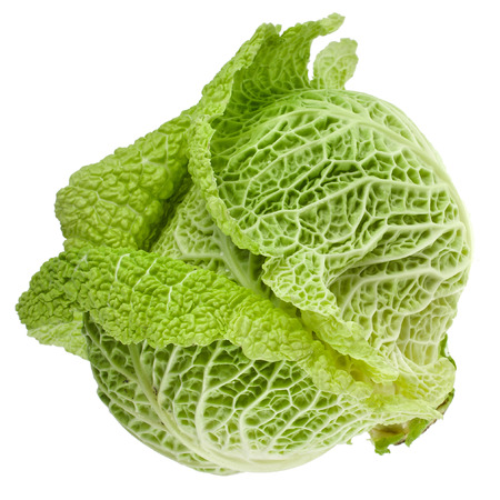 savoy: Savoy Cabbage head Isolated on White Background Stock Photo
