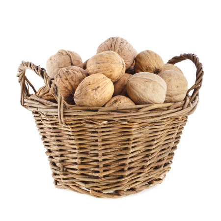 walnuts in basket isolated on white background photo