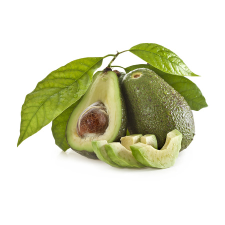 Avocado fruits with young leaves from Avocado tree, isolated on white photo