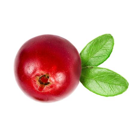 extreme macro: cranberry isolated on white background