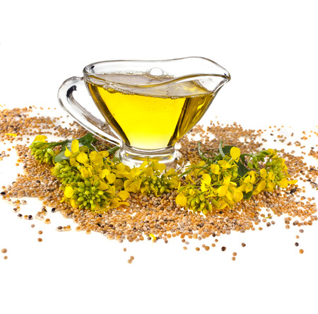rapaseed: Flower Oil in gravy boat and mustard flower isolated on white background Stock Photo