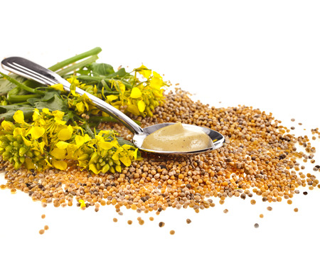 rappi: Mustard seeds heap and mustard flower isolated on white background