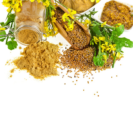 mustard leaf: Mustard jar and mustard powder spoon, seeds scoop, with fresh mustard flower on white