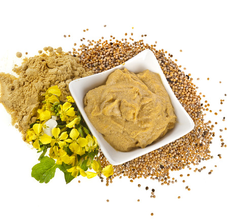 Mustard dish sauce and powder, seeds with mustard flower bloom isolated on white background photo